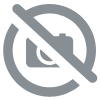 uruguay carte